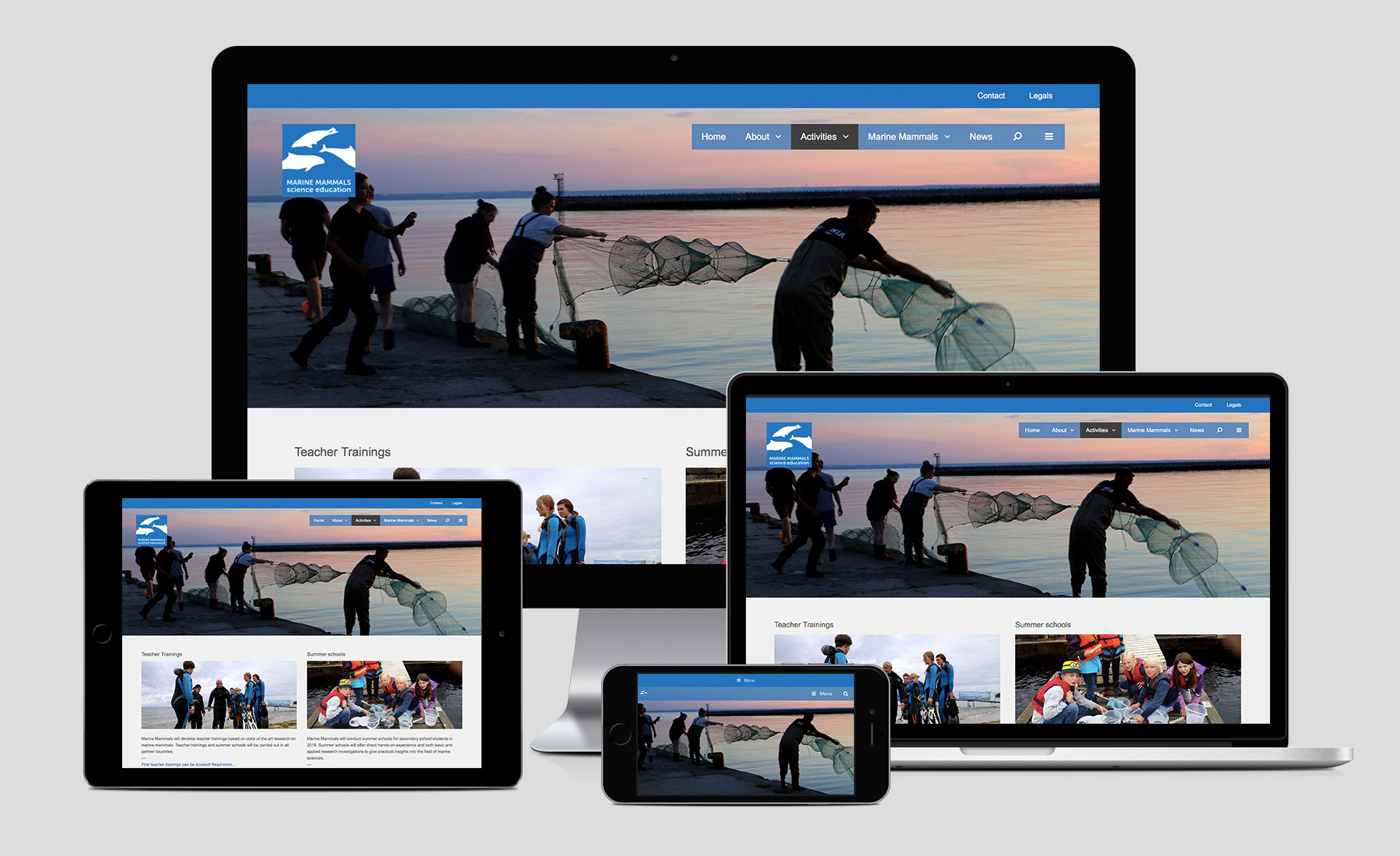 Marine Mammals Website Activities