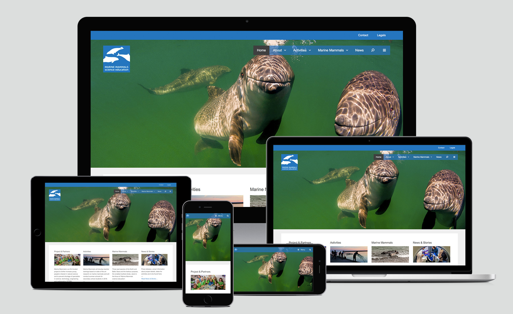 Marine Mammals Website Home